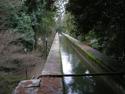 水路の上.JPG